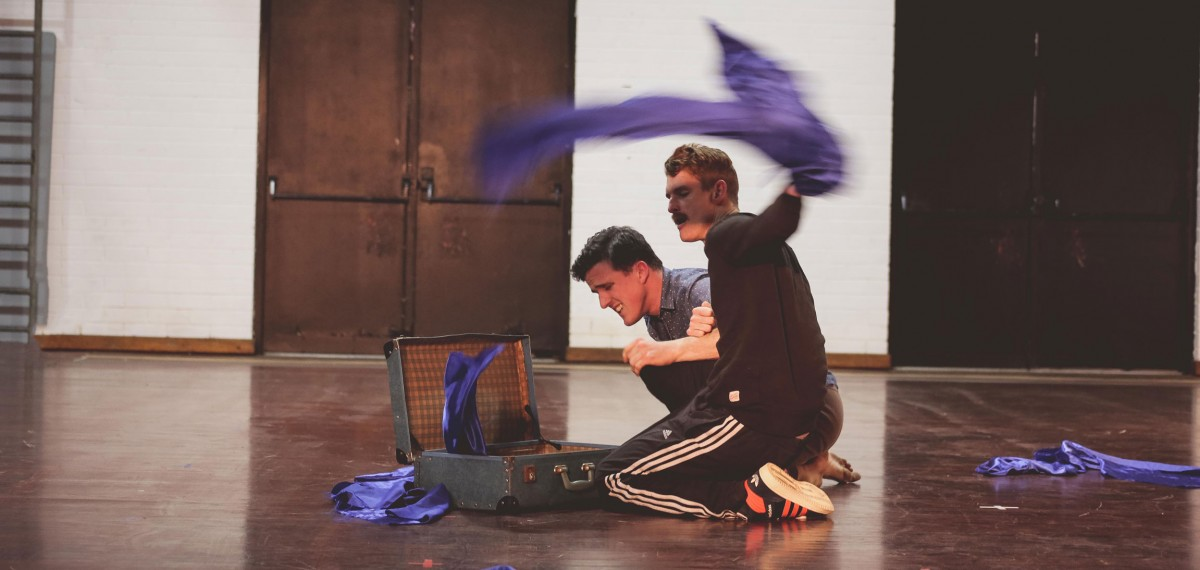 Bowerbirds-sharing.-Daniel-Dan-trying-next-to-an-open-suitcase-sense-of-motion-surrounded-by-scraps-of-blue-fabric-Dan-appears-to-be-throwing-one